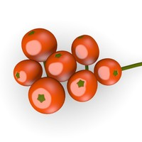 3d model rowan berries