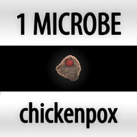 3d microbes micro organisms