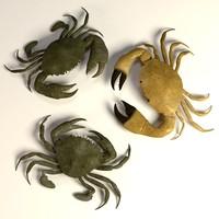 3d crabs model