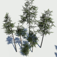 3d grim designs pine pack model