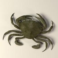 crab liocarcinus vernali 3ds