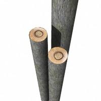 3d max tree trunk