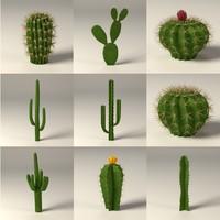 cactuses.c4d