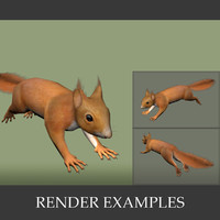 squirrel rodent 3d 3ds