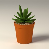 3ds max suculent pot