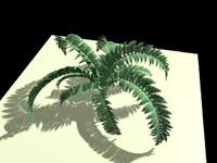 c4d plant