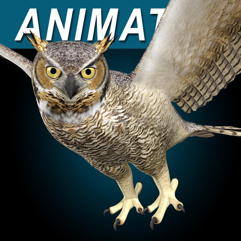 Great_Horned_Owl_AAA.jpg