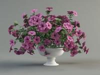 max petunia flower