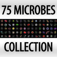 Collection of 75 microbes
