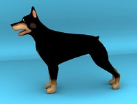 3d dog dobermann model