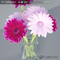 3ds max gerbera flower