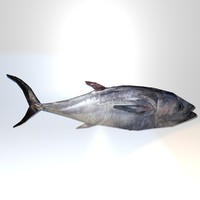 Great Tuna