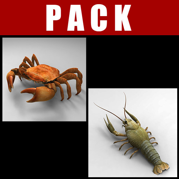 Crayfis Crab