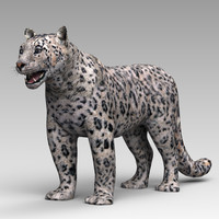 snow leopards c4d