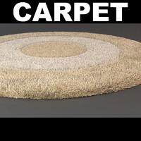 3d rug strands model