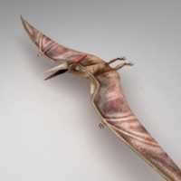 Pterosaur