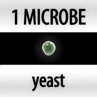 microbes micro organisms max