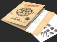 maya police file