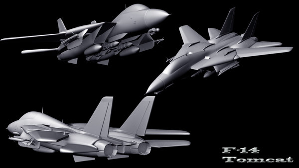 3d f-14 tomcat - F-14 Tomcat... by nick.cupid