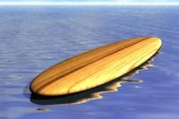 surf wear 3d model