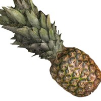 pineapple fruit 3d obj