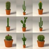 cactus+pots.max