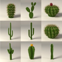 cactuses.max