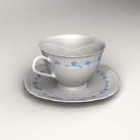 Teacup with Plate