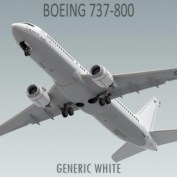 Boeing_737_800_04.jpg