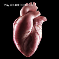 cinema4d anatomy heart