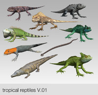 3d model tropical reptiles