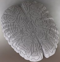 Maze in the shape of the brain