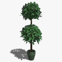 3D Tree (Topiary) for SketchUp