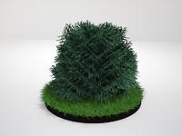 plant landscapes parks 3d max
