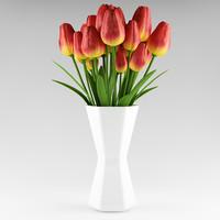 plant_x_16_tulips