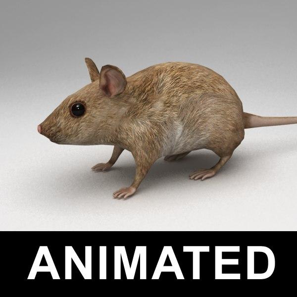 mouse_v0.png