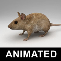 3ds max rigged mouse