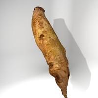 red beet long