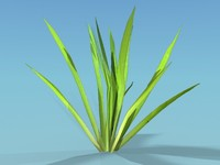 Lowpoly Grass