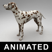 maya rigged dalmatian