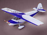 polish airplane 3d model