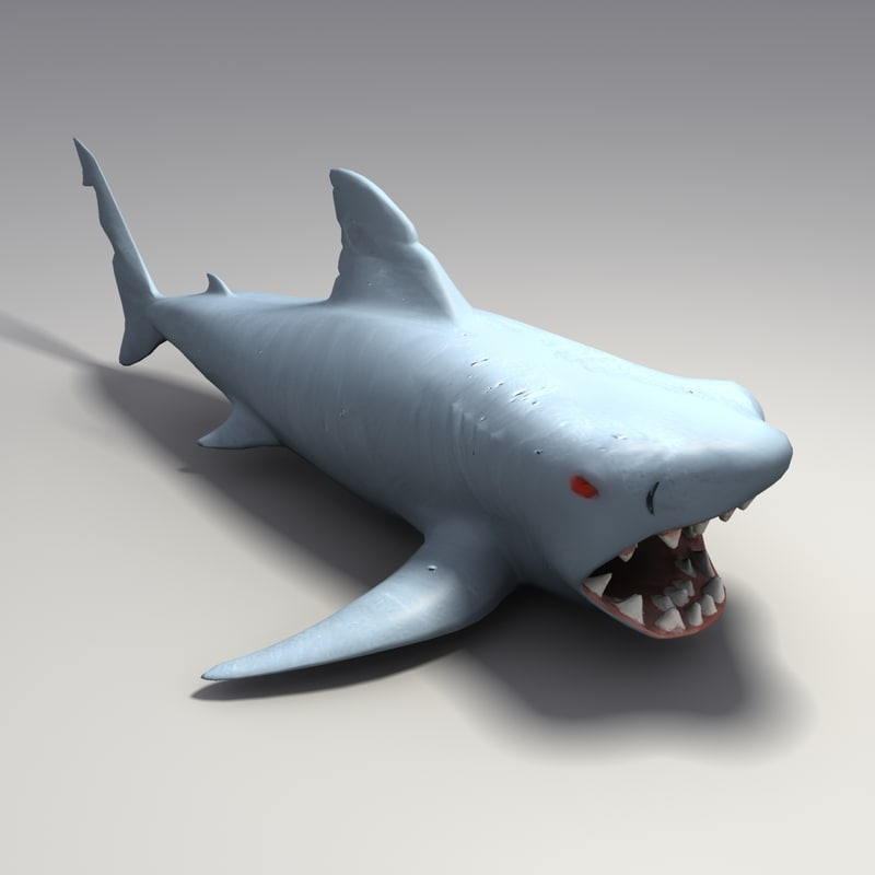 3d model toy rubber shark for Rubber fish toy