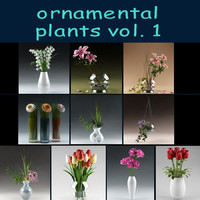 plant ornamental 3d model