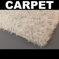 3d model rug 2
