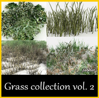 GRASS COLLECTION 2