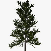 leafy tree background dxf