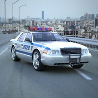 3d car police nypd