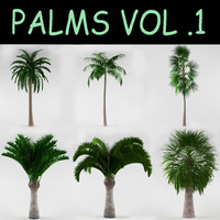 max vol 1 palm
