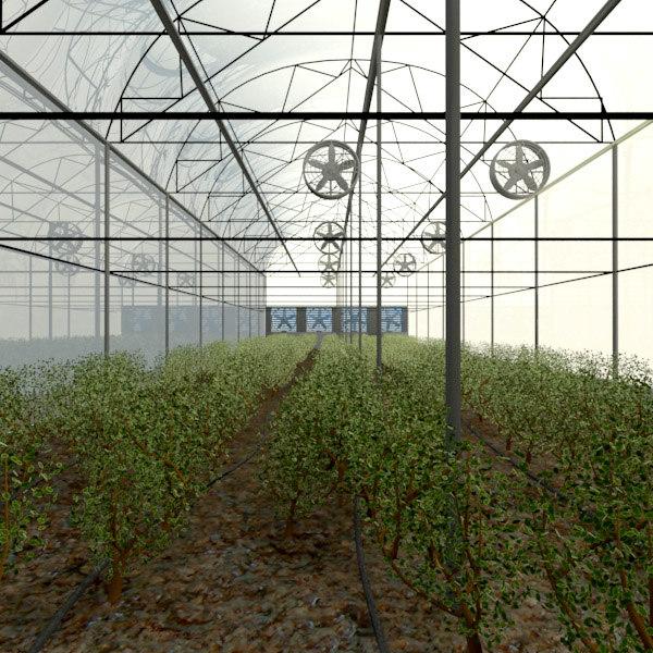 Greenhouse_01.jpg