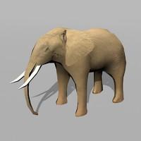 ma elephant uv